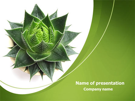 Aloe Plant PowerPoint Template