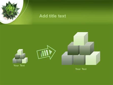 Aloe Plant PowerPoint Template Slide 13