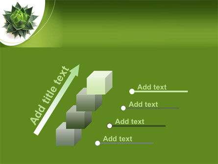 Aloe Plant PowerPoint Template Slide 14
