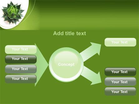 Aloe Plant PowerPoint Template Slide 15