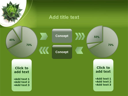 Aloe Plant PowerPoint Template Slide 16