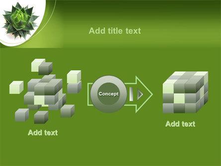 Aloe Plant PowerPoint Template Slide 17
