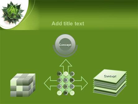Aloe Plant PowerPoint Template Slide 19