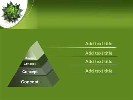 Aloe Plant PowerPoint Template, Slide 4, 08038, Agriculture — PoweredTemplate.com