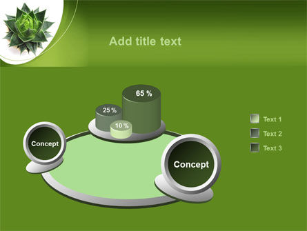 Aloe Plant PowerPoint Template Slide 6