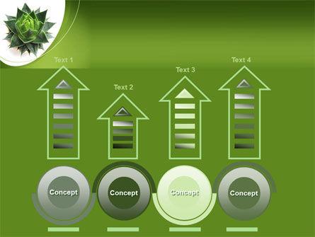 Aloe Plant PowerPoint Template Slide 7