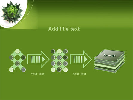 Aloe Plant PowerPoint Template Slide 9