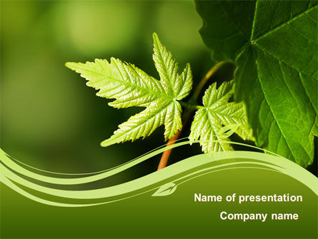 Nature & Environment: Forest Leaf PowerPoint Template #08128