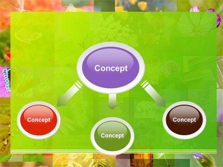 Flower Varieties PowerPoint Template, Slide 4, 08143, Nature & Environment — PoweredTemplate.com