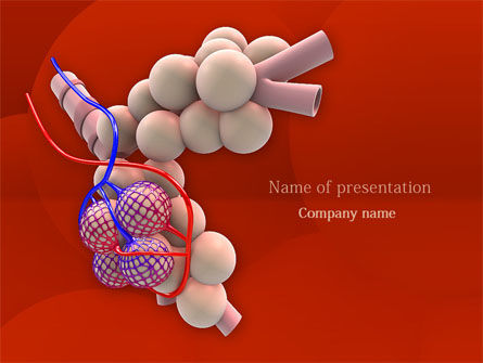 Medical: Alveoli PowerPoint Template #08145