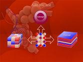 Alveoli PowerPoint Template#19