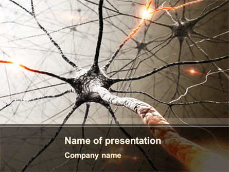 Neurons Networks PowerPoint Template, 08156, Medical — PoweredTemplate.com