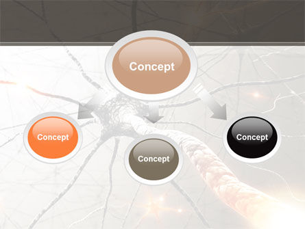 Neurons Networks PowerPoint Template, Slide 4, 08156, Medical — PoweredTemplate.com