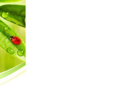 Ladybird on Leaf PowerPoint Template, Slide 3, 08195, Nature & Environment — PoweredTemplate.com