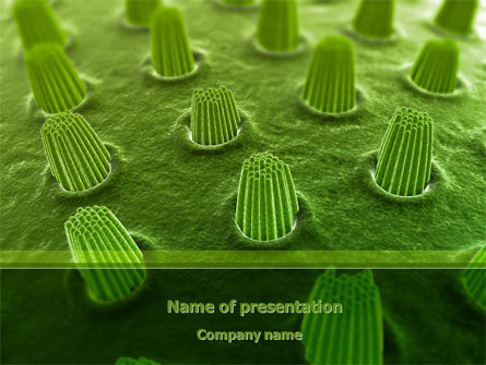 Ear Cells PowerPoint Template, 08246, Medical — PoweredTemplate.com