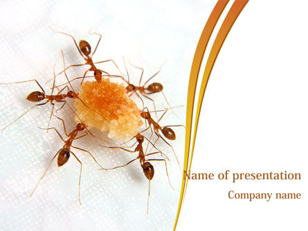 Business Concepts: Ants Team Work PowerPoint Template #08289