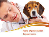 Animals and Pets: Tierarzt PowerPoint Vorlage #08292
