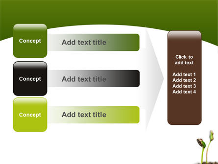 Sprouting Seed PowerPoint Template Slide 12
