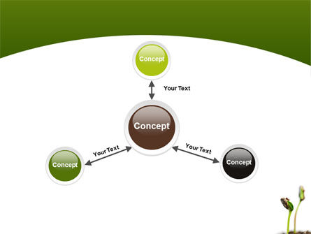 Sprouting Seed PowerPoint Template Slide 14