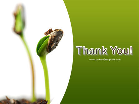 Sprouting Seed PowerPoint Template Slide 20