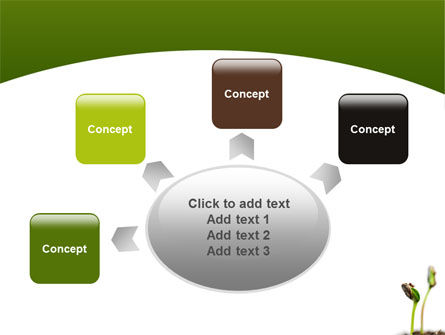 Sprouting Seed PowerPoint Template Slide 7