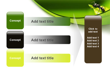 Ant PowerPoint Template Slide 12