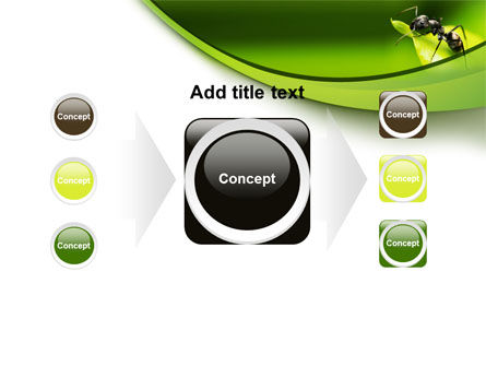 Ant PowerPoint Template Slide 17