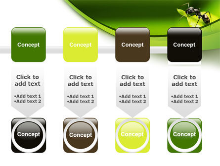 Ant PowerPoint Template Slide 18