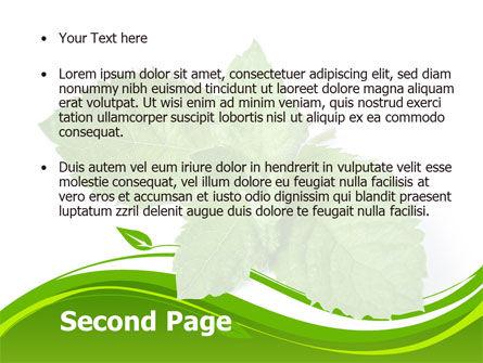 Mint PowerPoint Template, Slide 2, 08379, Nature & Environment — PoweredTemplate.com
