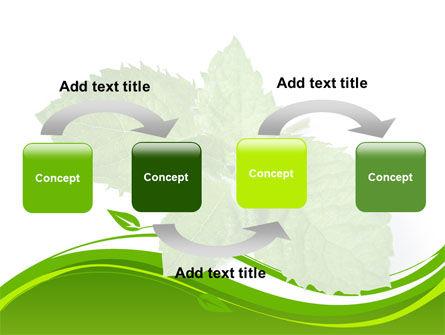 Mint PowerPoint Template, Slide 4, 08379, Nature & Environment — PoweredTemplate.com