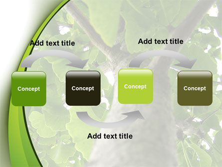 Tree Growth PowerPoint Template, Slide 4, 08387, Nature & Environment — PoweredTemplate.com