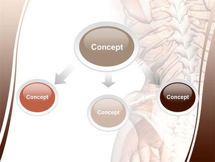 Vertebrae PowerPoint Template, Slide 4, 08404, Medical — PoweredTemplate.com