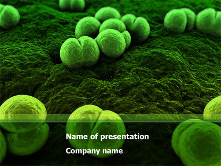 Meningococcus PowerPoint Template, 08407, Medical — PoweredTemplate.com
