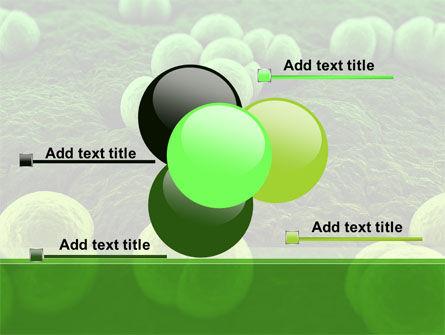 Meningococcus PowerPoint Template Slide 10