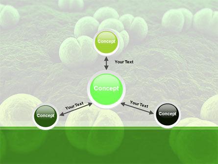 Meningococcus PowerPoint Template Slide 14