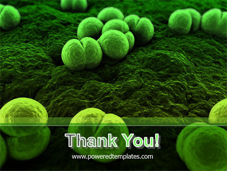 Meningococcus PowerPoint Template Slide 20