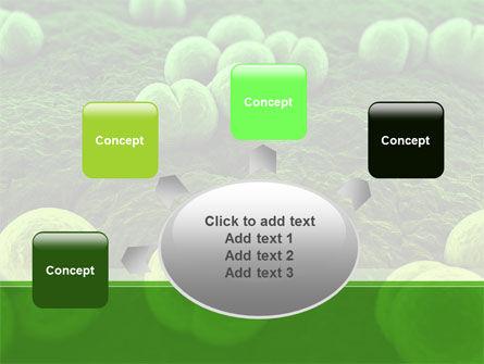 Meningococcus PowerPoint Template Slide 7