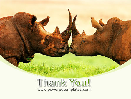Two Rhinos Free PowerPoint Template Slide 20