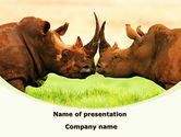 Animals and Pets: Two Rhinos Free PowerPoint Template #08438