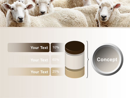 Sheep Flock PowerPoint Template Slide 11