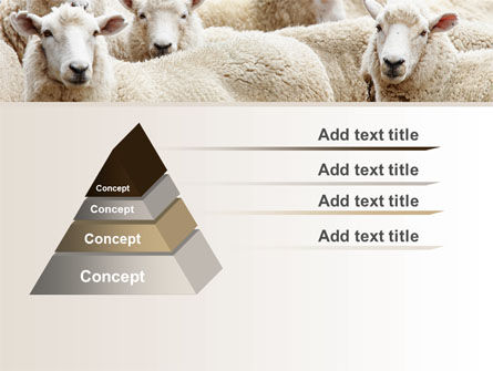 Sheep Flock PowerPoint Template Slide 12