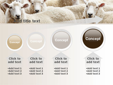 Sheep Flock PowerPoint Template Slide 13