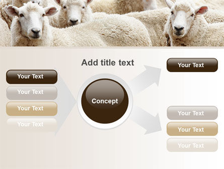 Sheep Flock PowerPoint Template Slide 14