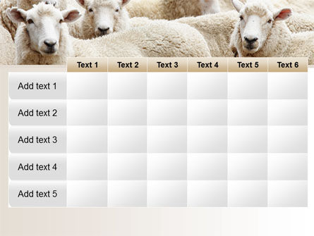 Sheep Flock PowerPoint Template Slide 15