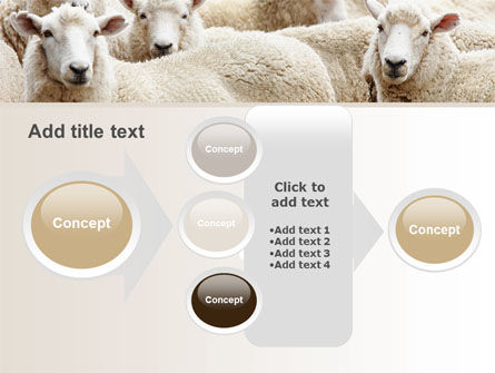 Sheep Flock PowerPoint Template Slide 17