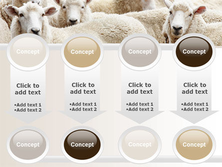 Sheep Flock PowerPoint Template Slide 18