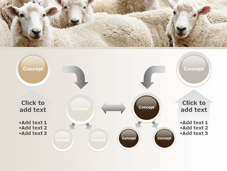 Sheep Flock PowerPoint Template Slide 19