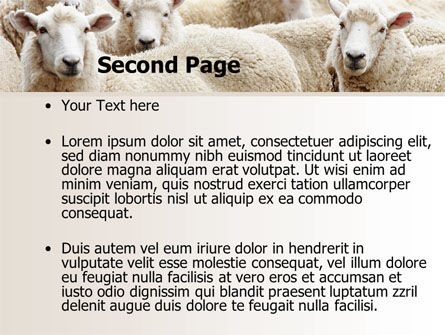 Sheep Flock PowerPoint Template, Slide 2, 08443, Agriculture — PoweredTemplate.com