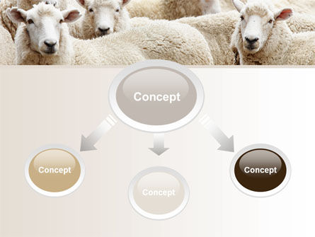Sheep Flock PowerPoint Template Slide 4