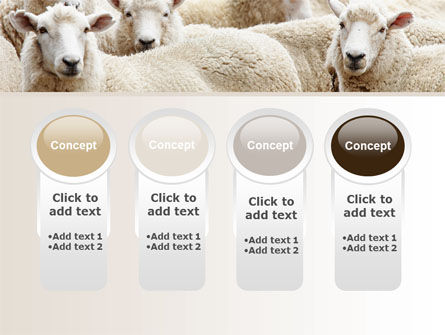 Sheep Flock PowerPoint Template Slide 5